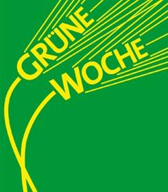 grüne w 2011