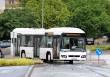 hybrid busz