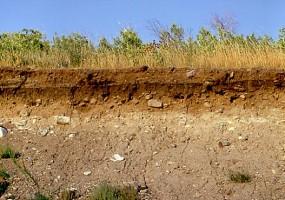 A talaj szerkezete