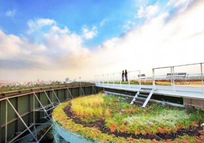 Zöld tető