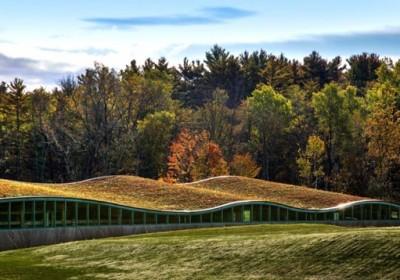 Zöld tetős iskola