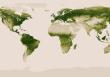 Teljes térkép