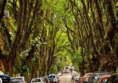 Legszebb utca