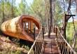 Fibonacci-Tree-House-Blue-Forest