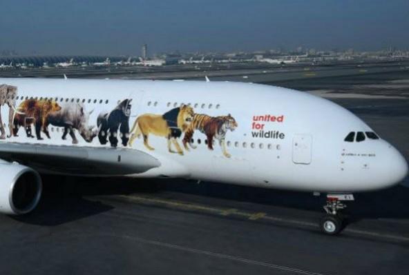 emirates-plane-592x399