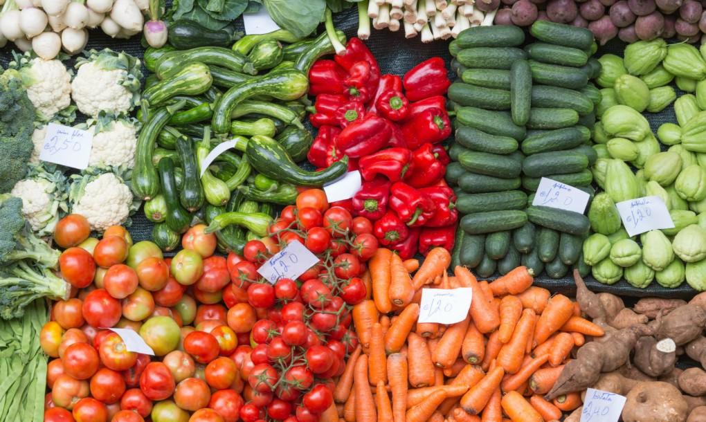 Italy-food-waste-ban-1020x610