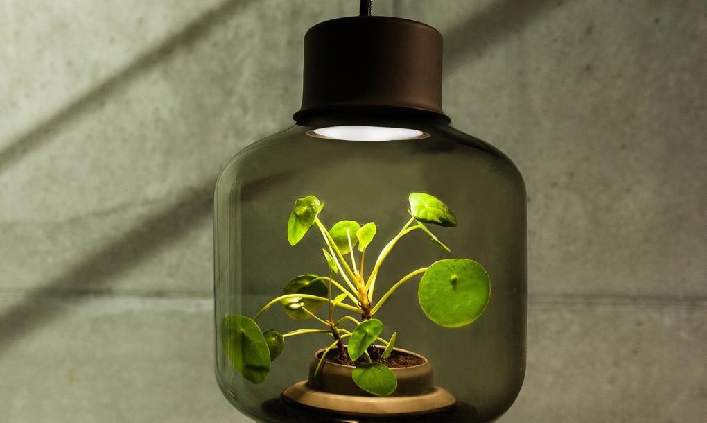 Mygdal-Plantlamp-Hanging-1020x610