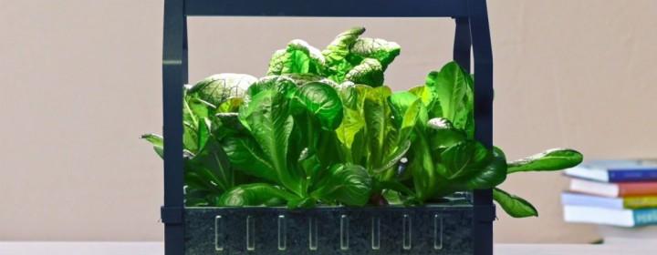 ikea-hydroponic-garden-1020x610