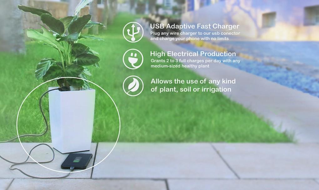 Bioo-planter-pot-1020x610