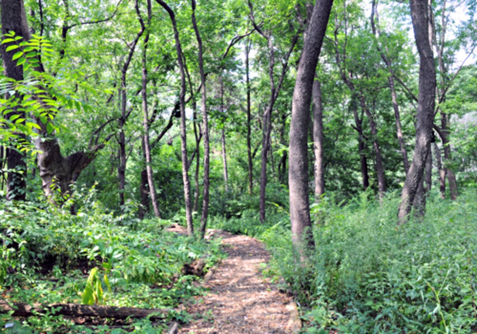 hallett-nature-sanctuary2