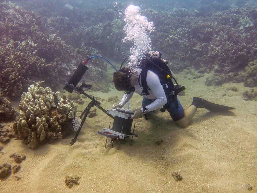 marine-microscope-1