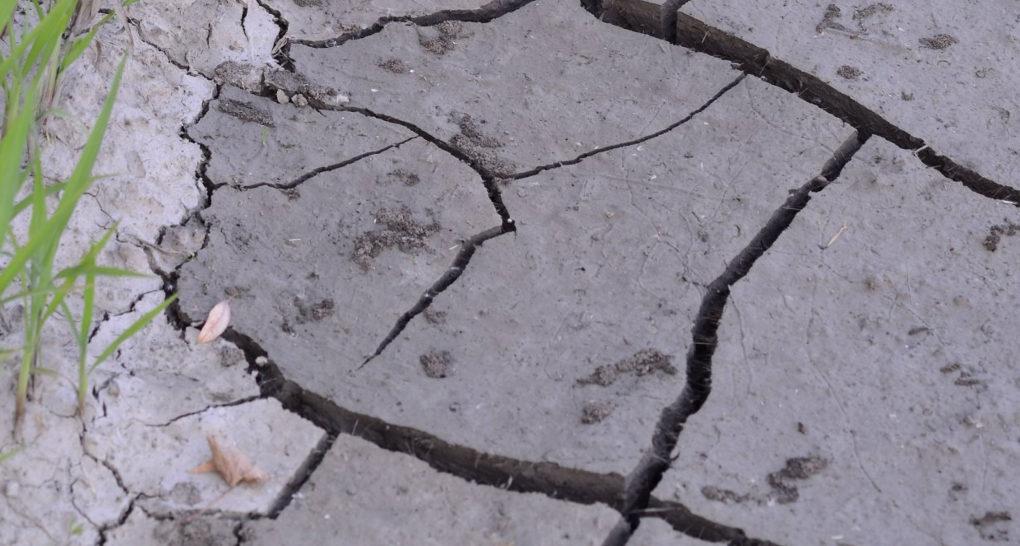 A NASA kutatásai szerint Kaliforniára további szárazság vár
