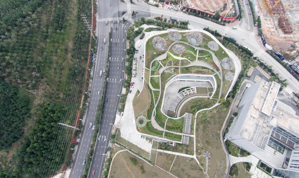 Parkot csinálnak az épület tetjéből
