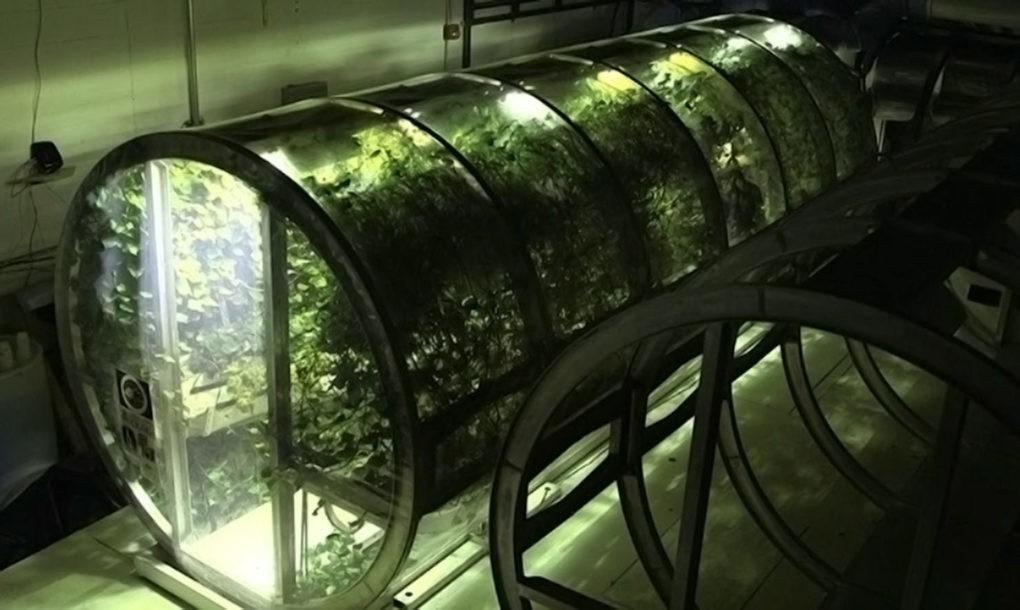 Itt a NASA első űr-üvegháza