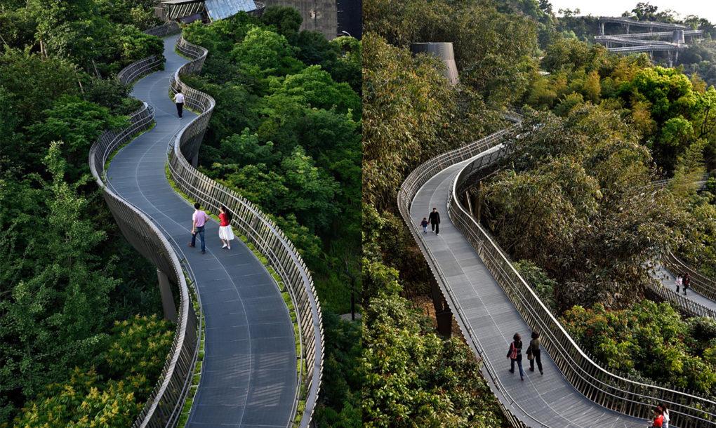 Modern erdei ösvény Kína egyik legzöldebb városában