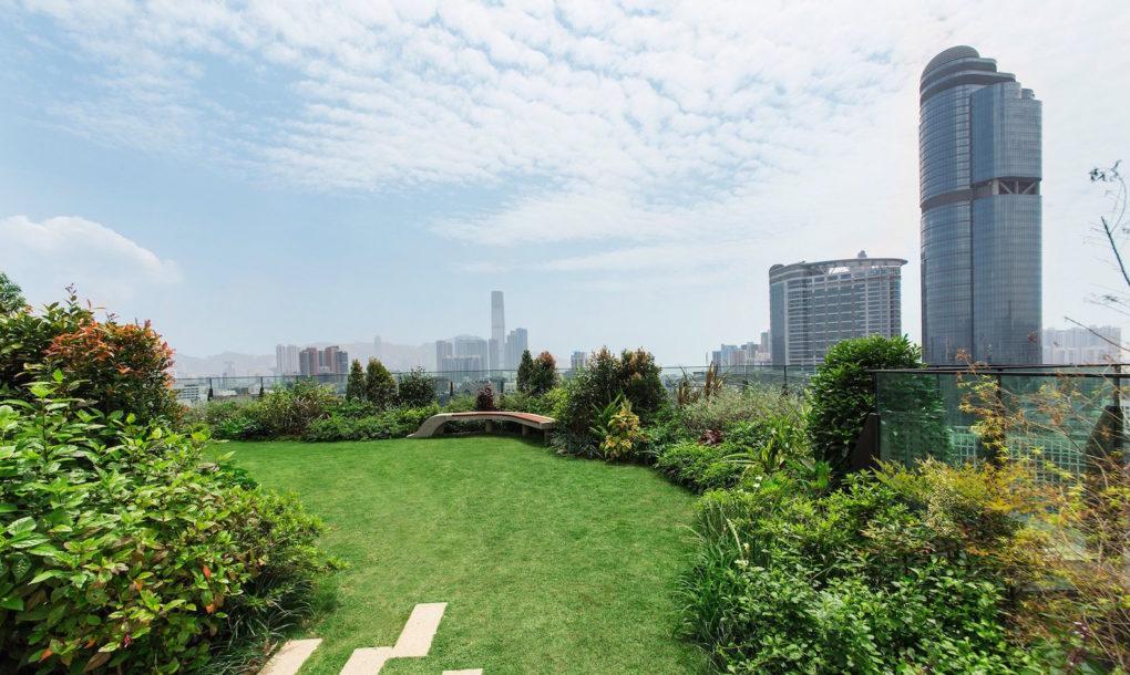 Égi kert a zsúfolt város közepén