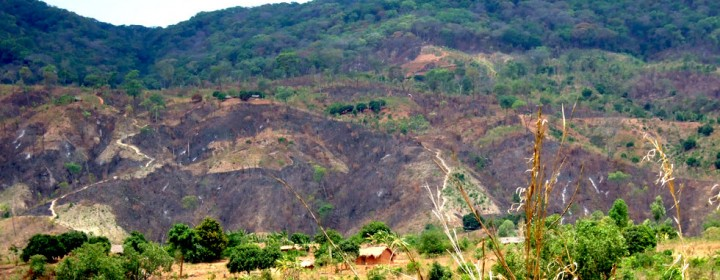 Deforestation-in-Nkhata-Bay-District-RIPPLE-Africa-Charity