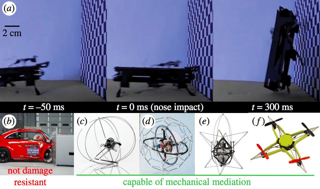 cockroach-robot-movement